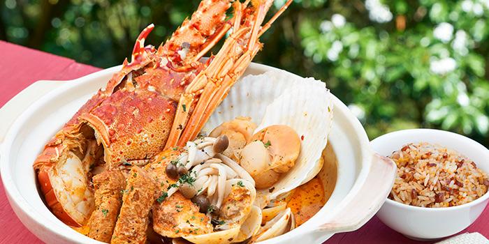 Lobster_Ba_La_La_La_jpg_1468488285